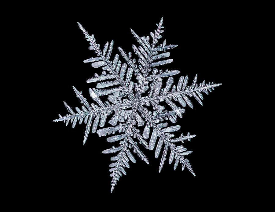 Snowflake by Brian Caldwell