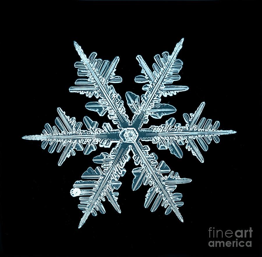 Symbol Photograph - Snowflake Isolated Natural Crystal by Kichigin