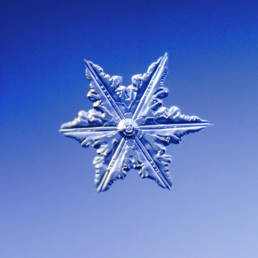 Snowflake On Blue Background Photograph by Fwwidall