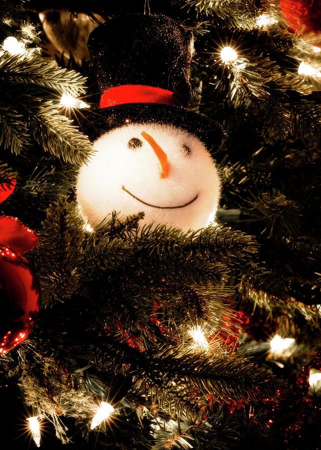 Snowman by Allin Sorenson