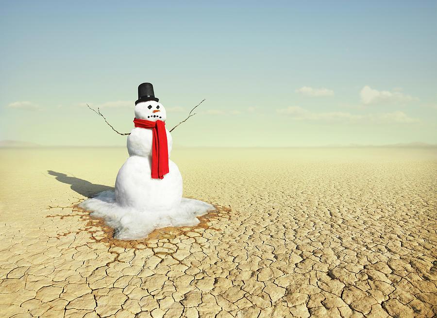 Snowman In The Desert Photograph by Stephen Swintek