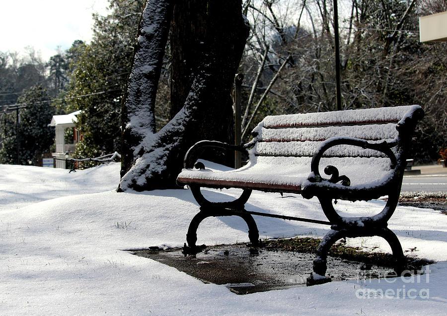 Snowy Bench 2 by Robert M Seel