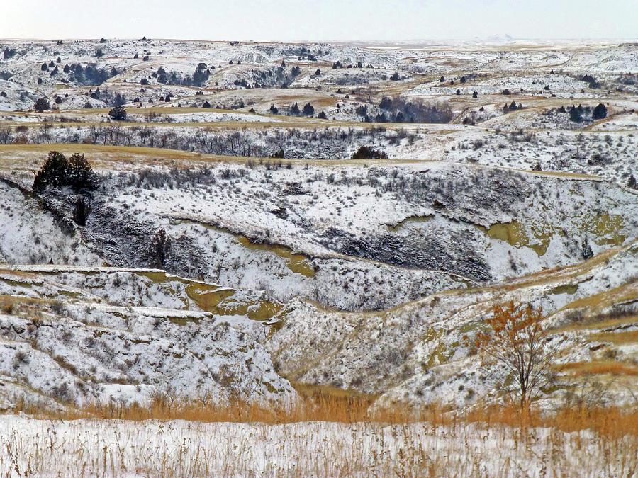 North Dakota Photograph - Snowy Dakota by Cris Fulton