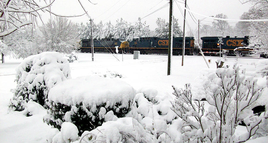 Snowy Day Train by Belinda Landtroop