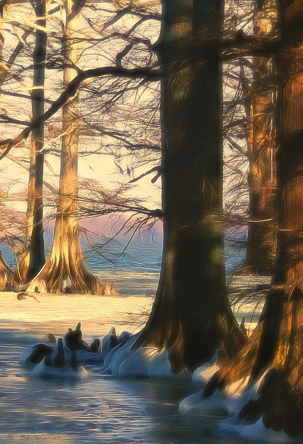 Snowy Evening at Reelfoot Lake by Bonnie Willis