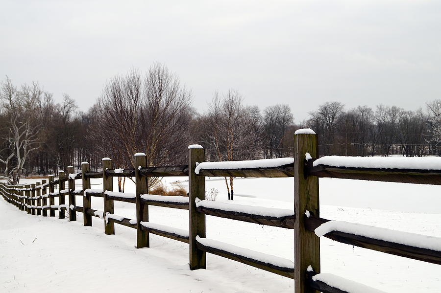 Snowy Fenceline by BETH COLLINS