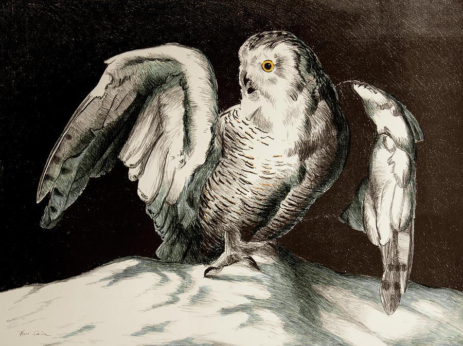 Snowy Owl by Hans Egil Saele