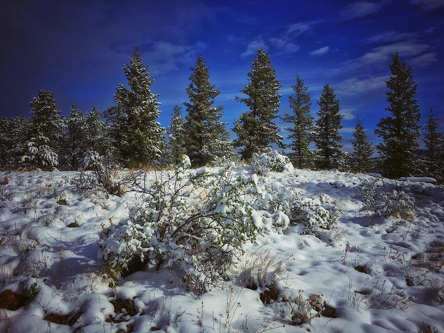 Snowy Ridgeline by Dan Miller