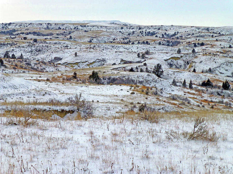 North Dakota Photograph - Snowy Slope County by Cris Fulton
