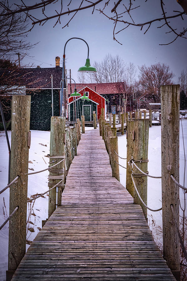 Snowy Walk by William Chizek