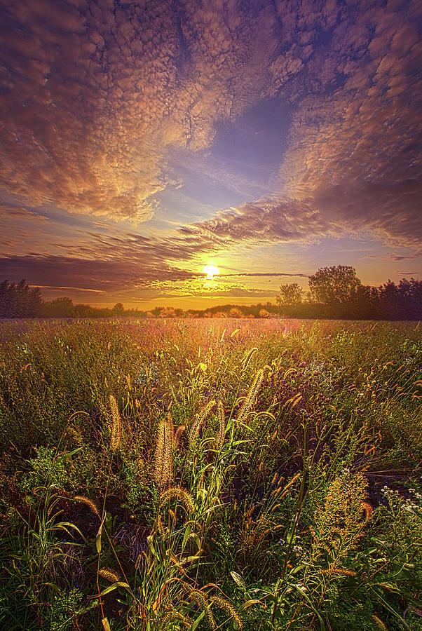 Life Photograph - So Long As We Love by Phil Koch