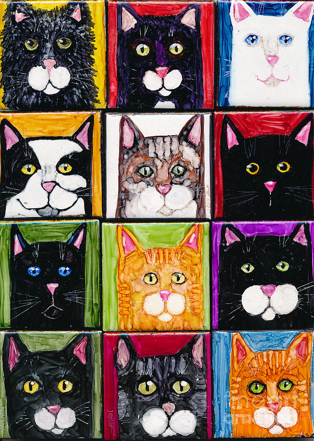 So Many Cats by Jan Killian