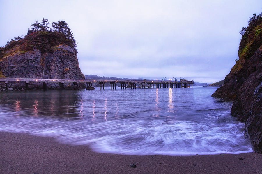 California Photograph - Soaking It All In by Marnie Patchett