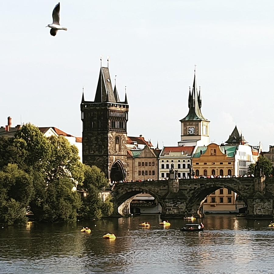 Soaring Over Prague by Andrea Whitaker