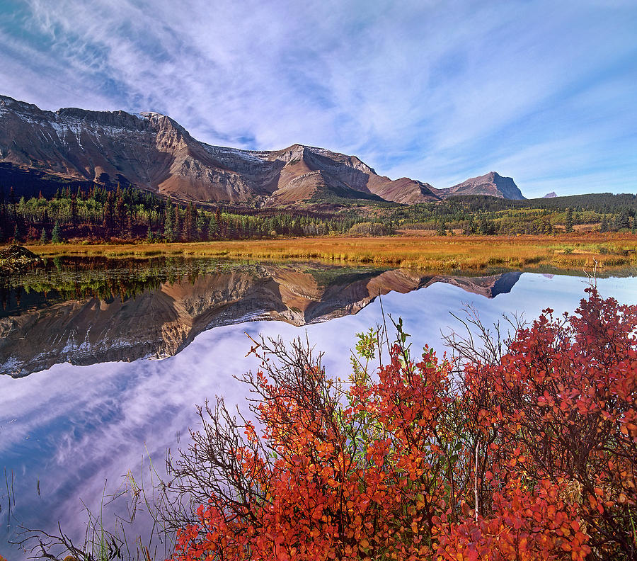Mp Photograph - Sofa Mountain Reflecteion, Waterton by Tim Fitzharris