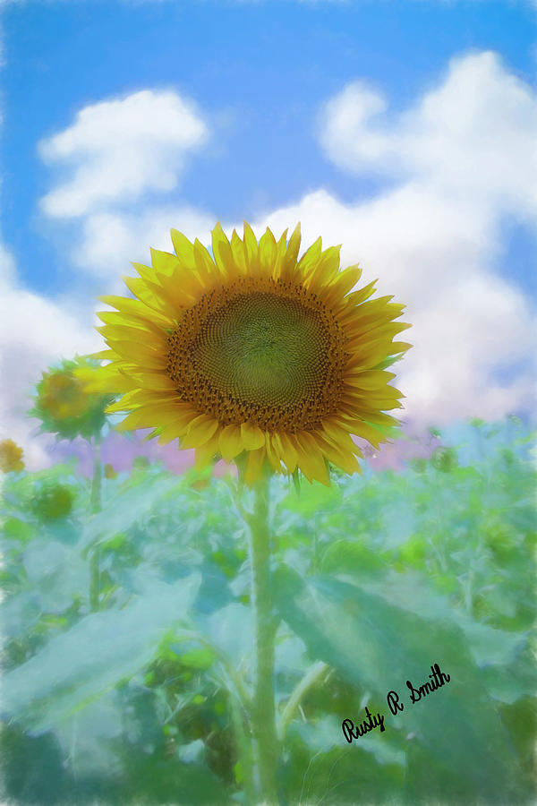Soft art effect of a single sunflower standing tall. by Rusty R Smith
