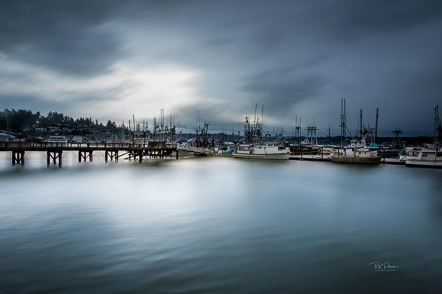 Soft Bay Morning by Bill Posner