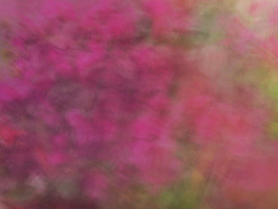 Soft pastel flower like abstract and flowing blurred design of pinks and greens by Teri Virbickis