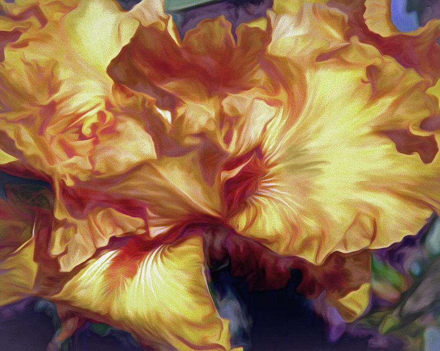 Soft Peachy Petals 32 by Lynda Lehmann