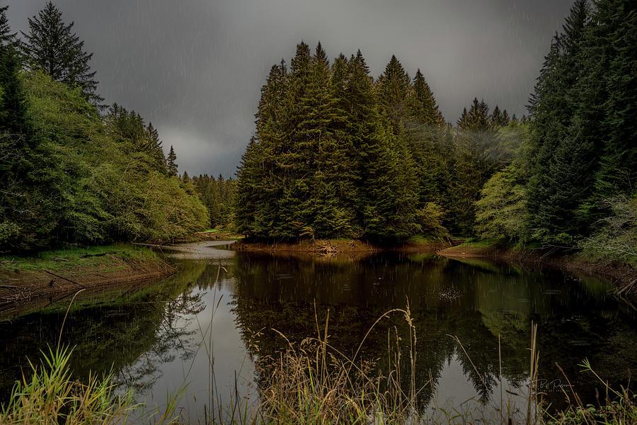 Soft Rainy Reservoir  by Bill Posner