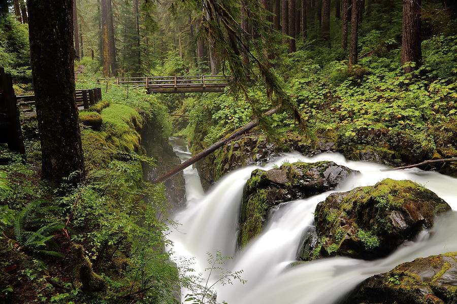 Sol Duc into the Chasm by David Andersen
