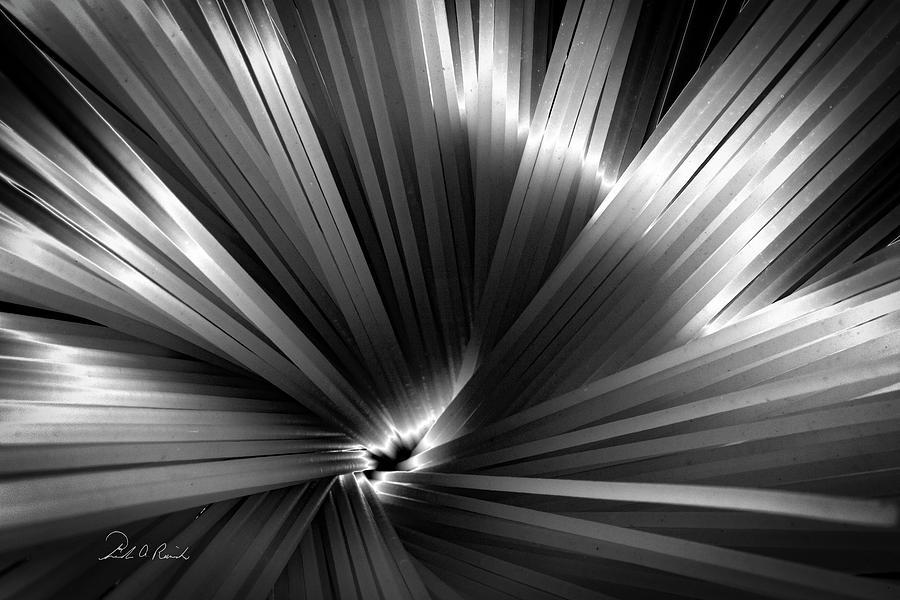 Solarized Pasta #2 by Frederic A Reinecke