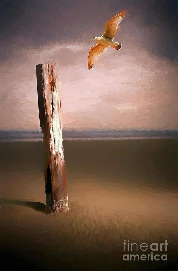 Solitary Flight AP by Dan Carmichael