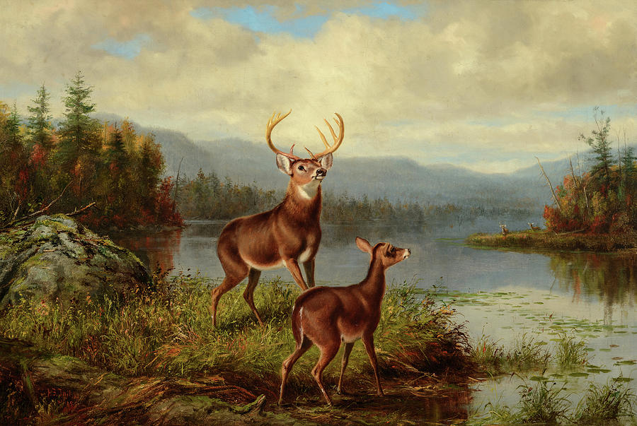 Arthur Fitzwilliam Tait Painting - Solitude, Forked Lake, 1885 by Arthur Fitzwilliam Tait
