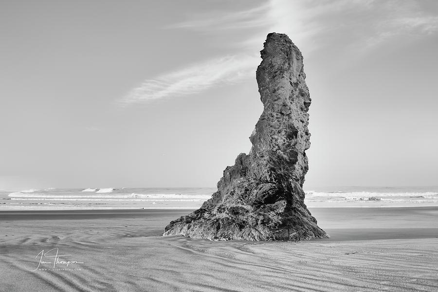 Bandon Beach Photograph - Solo by Jim Thompson