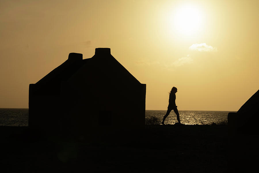 Somber Silhouette by Thomas Gaitley