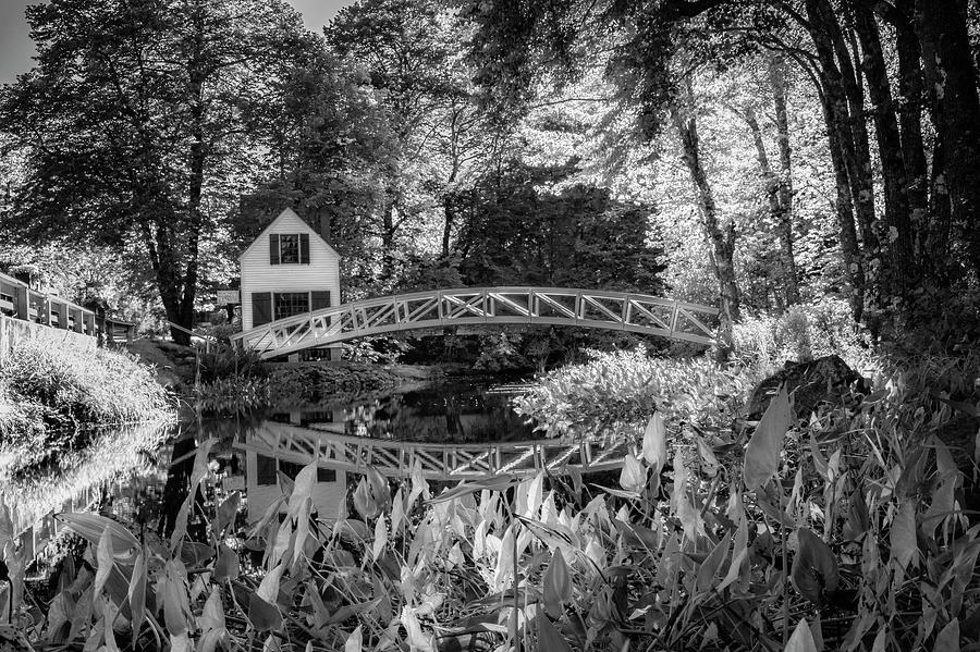 Somesville Bridge by Kerri Cunningham