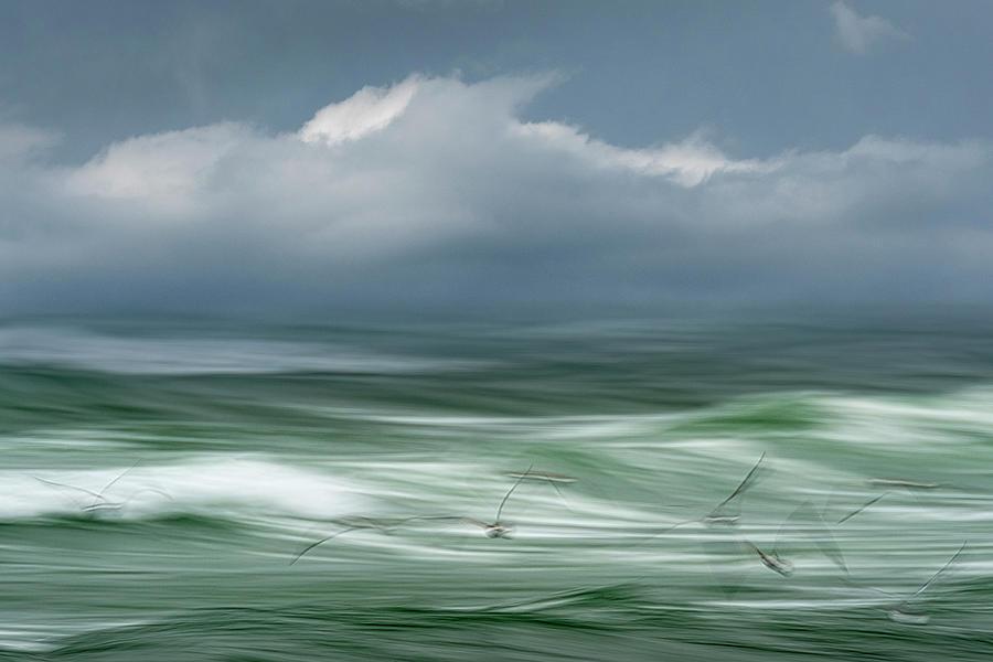 Song of the Sea by John Whitmarsh