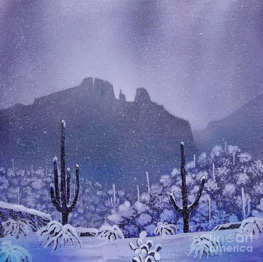 Sonoran Snowfall by Jerry Bokowski