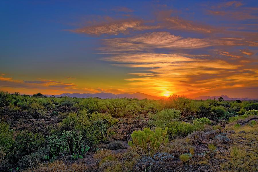 Sonoran Sunset H44 Photograph