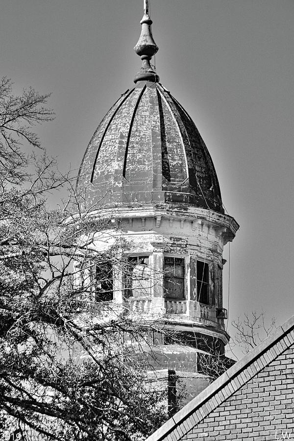 South Carolina State Hospital Dome Black And White 3 by Lisa Wooten