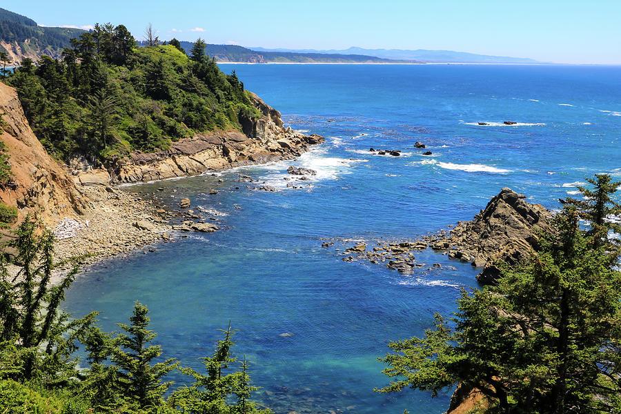 South Cove 1, Cape Arago, Oregon by Dawn Richards