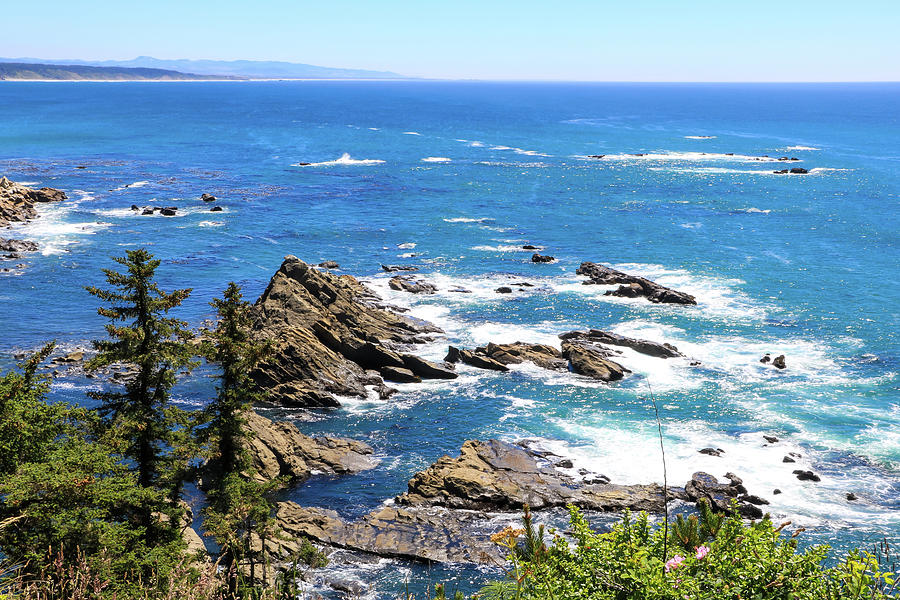 South Cove 2, Cape Arago, Oregon by Dawn Richards