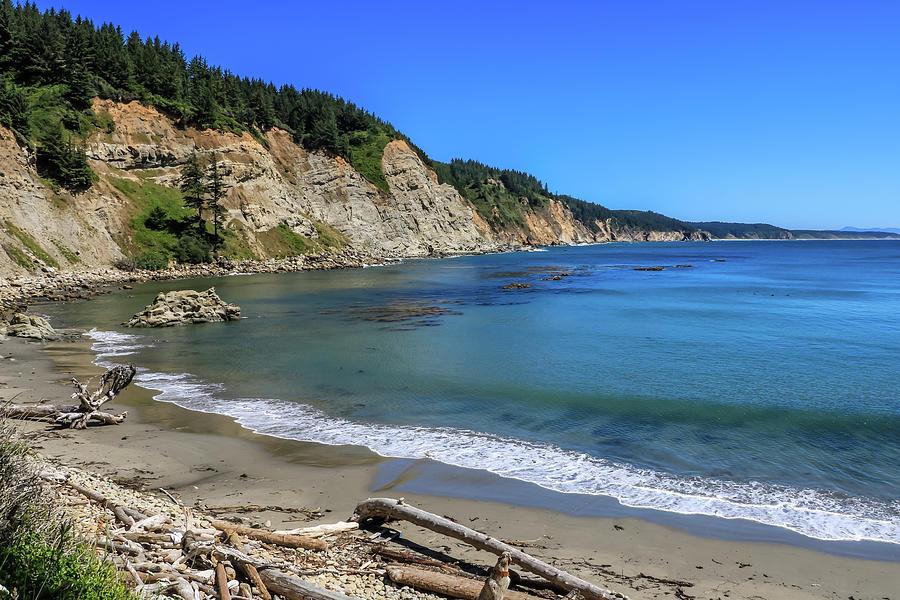 South Cove Beach, Cape Arago, Oregon by Dawn Richards