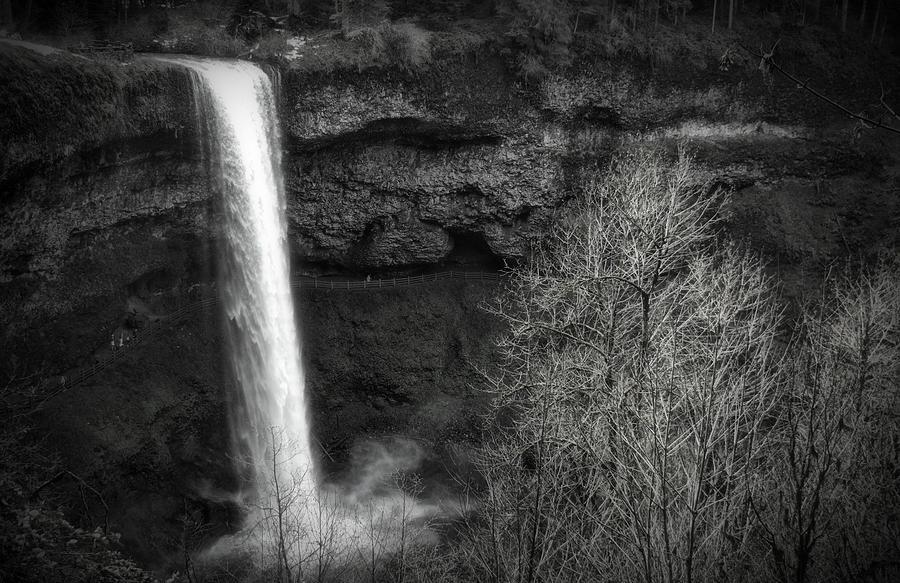 South Falls BW by Bonnie Bruno