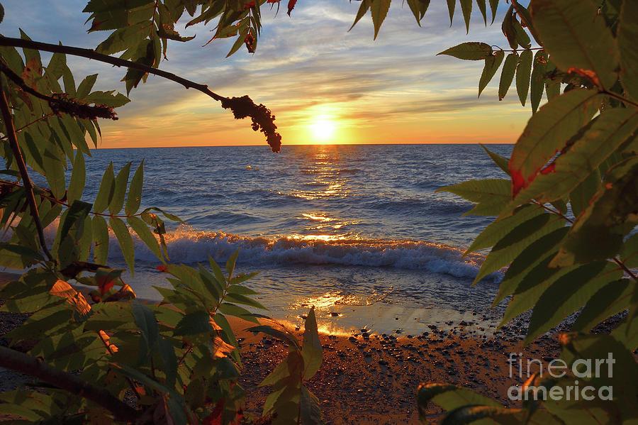South Haven Sunset Photograph by Diane Elwaer
