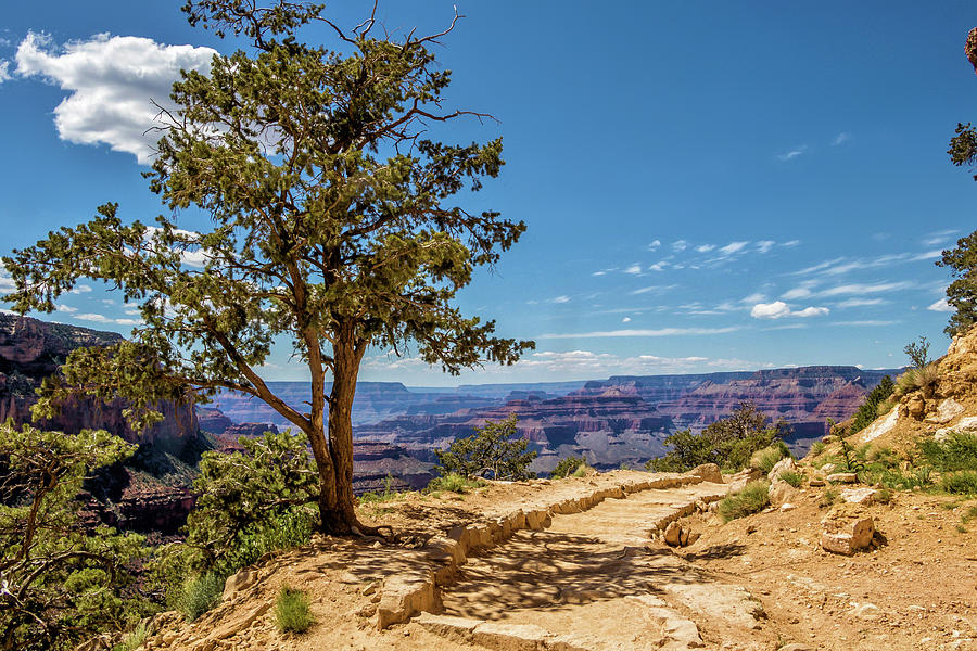 South Kaibab Trail 28 by Marisa Geraghty Photography