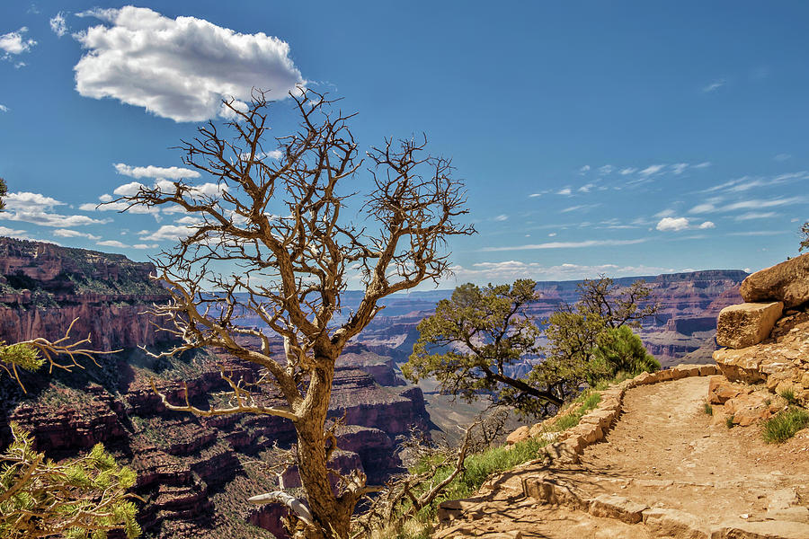South Kaibab Trail 29 by Marisa Geraghty Photography
