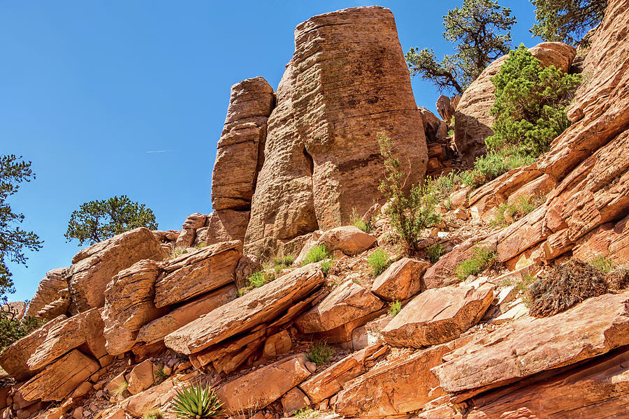 South Kaibab Trail 40 by Marisa Geraghty Photography