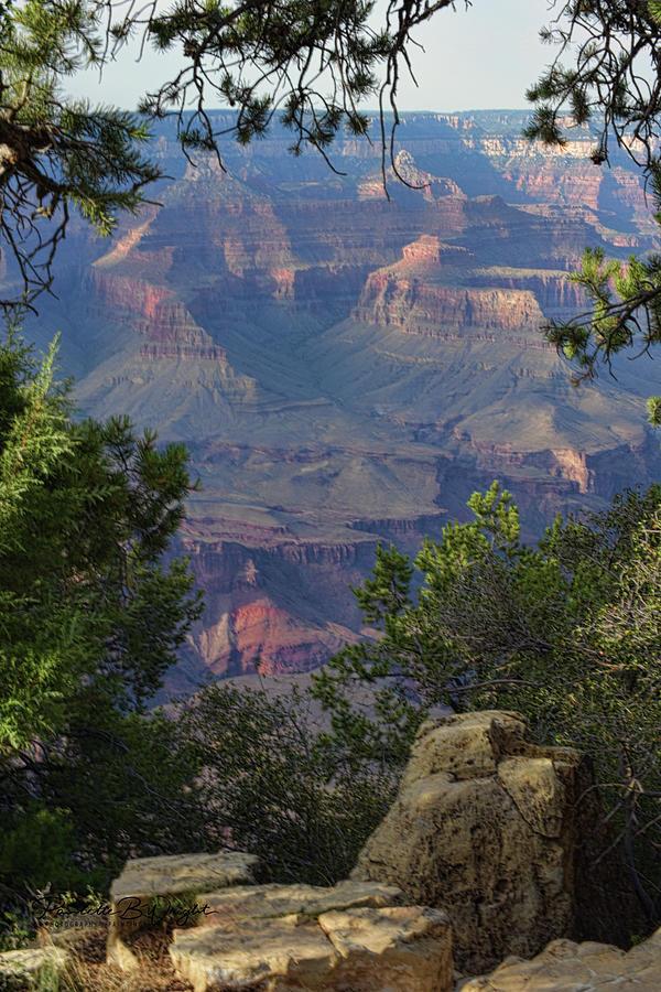 South Rim - Grand Canyon by Paulette B Wright