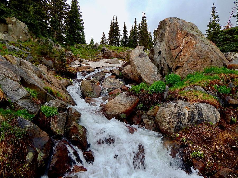 South Saint Vrain Creek by Dan Miller