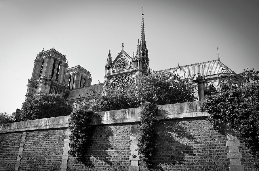 South side of Notre-Dame de Paris before the fire of 2019 BW by RicardMN Photography