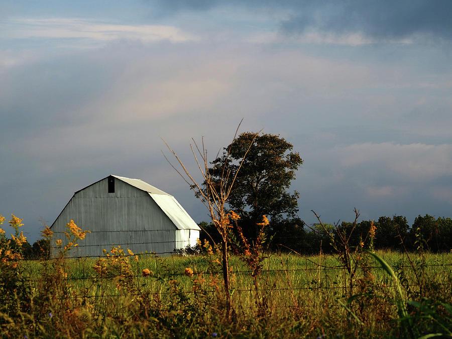 Southeast Missouri Barn by Ginger Repke