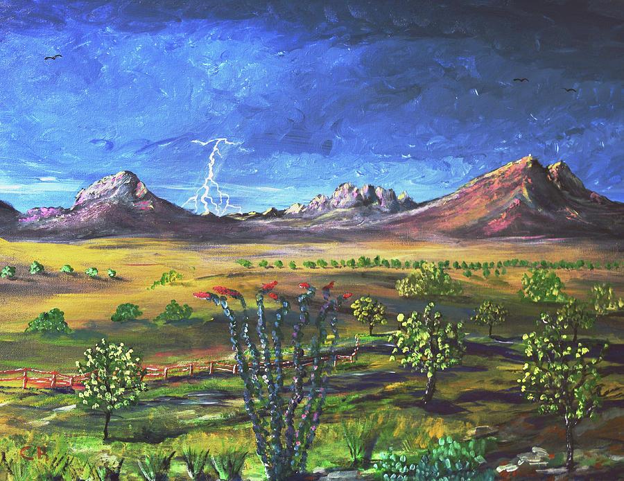 Southern Arizona Grandeur  by Chance Kafka