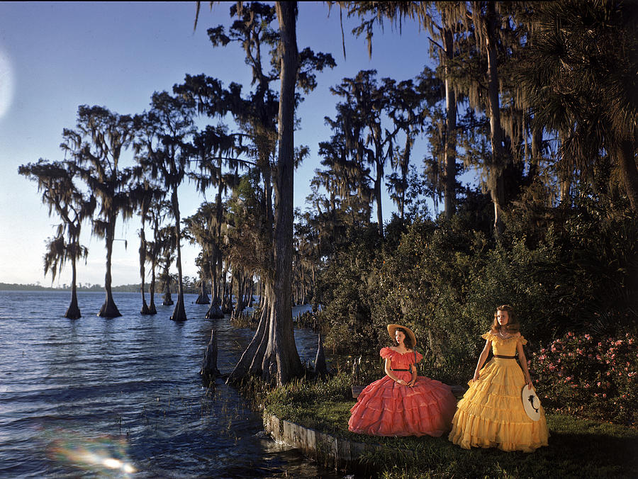 Southern Belles In Cypress Gardens Photograph by Eliot Elisofon