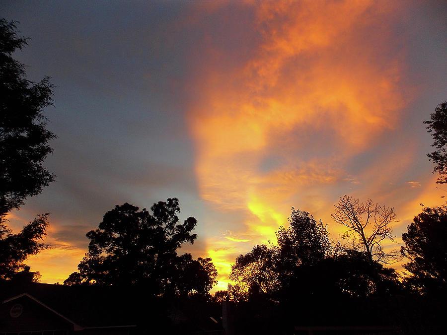 Southern Sunset by Matthew Seufer
